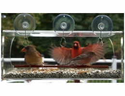 window mounted bird feeders